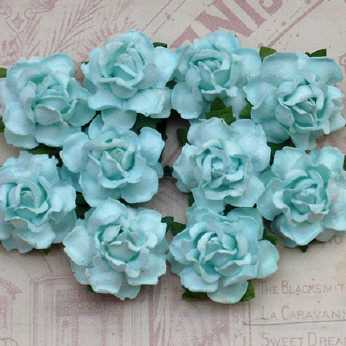 5 Stk. Rosen cottage roses aqua 25 mm