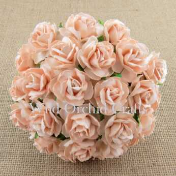 5 Stk. Rosen wild roses pale peach 30mm