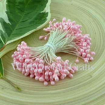 Baby Pink Double Head Pearl Stamens