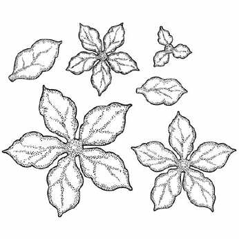 Creative Expressions Shaded Poinsettia