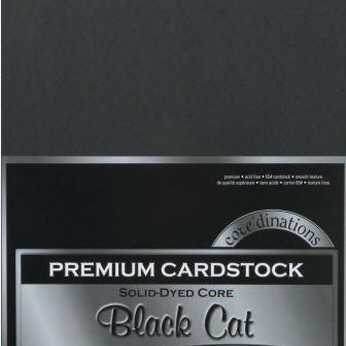 Core'dinations Premium Cardstock Black Cat